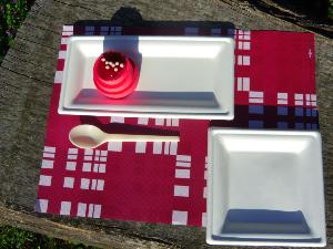 125 Assiettes pulpe rectangles 13x26 cm
